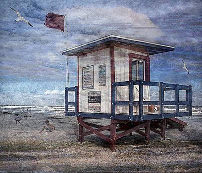 Day at the Beach by Nancie Rowan