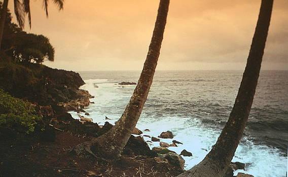 Diane Merkle - Day Break on Kauai