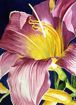 Day Lily in Sunlight by Janis Grau