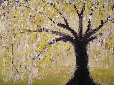 Daylight Tree by Paula  Heffel