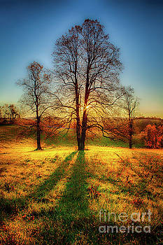 Dan Carmichael - Dazzling Autumn Blue Ridge Sunrise