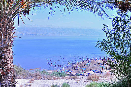 Dead Sea Overlook 2 by Lydia Holly