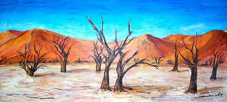 DeadVlei - Namibia  by Mary Sedici