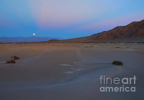 Mike Dawson - Death Valley Moonrise