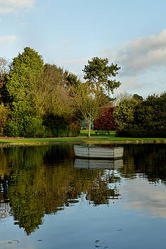 December in Burnby Hall Gardens by Sarah Couzens