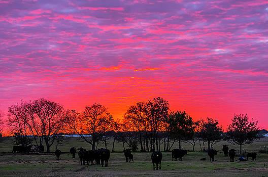 December Sunrise by Bob Marquis