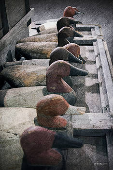 Decoys In A Row by Brian Wallace