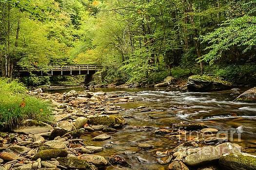 Deep Creek by Debbie Green