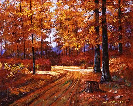 Deep Forest Road by David Lloyd Glover