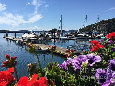 Deer Harbor By Day by William Wyckoff