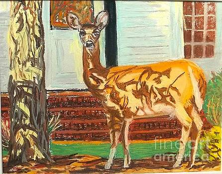 Deer in Camo by Frank Giordano