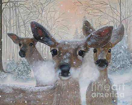 Deer in the Snowy Woods by Mary Hughes