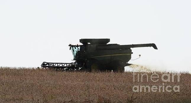 Deere Harvesting by J L Zarek