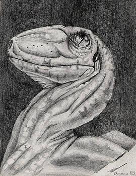 Deino Hatch Sketch by Michael McKenzie