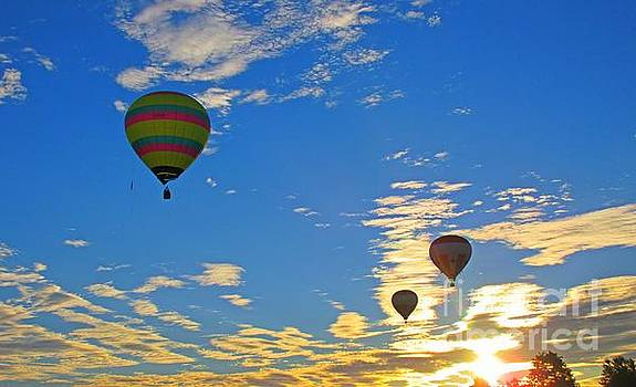 Delightful Photograph of Three Hot Air Balloons in a Gold and Blue Sky by John Malone