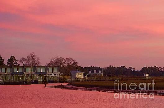 Delmarva Sunrise by Alice Mainville