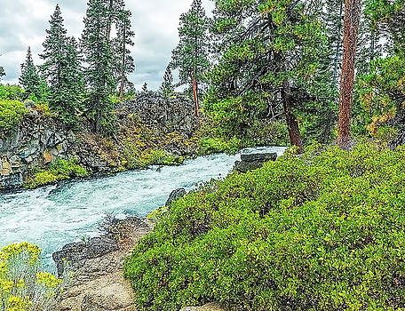 Deschutes River And Falls by Nancy Marie Ricketts