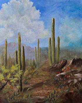 Desert Beauty by Jan Holman