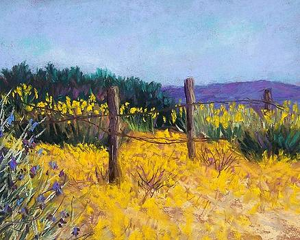 Desert Bloom by Candy Mayer