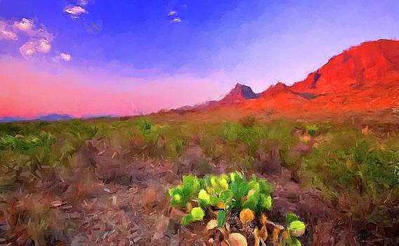 Desert Cactus by Gary Grayson