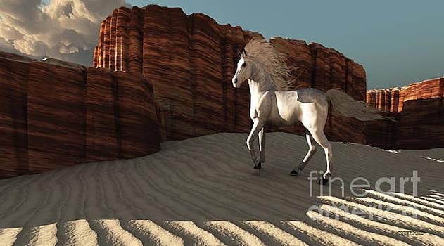 Corey Ford - Desert Canyon