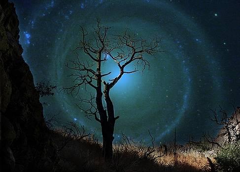 Desert Canyon Whirlpool Galaxy by Barbara Chichester