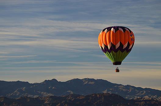 Desert Flight by Sue Houston