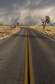 Desert Highway by John Daly
