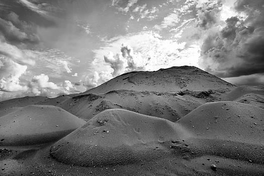 Desert Of Opa Locka #2 by Stephen Mack