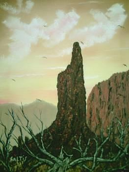 Desert Sentinel by Jim Saltis