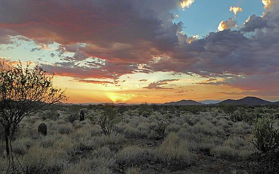 Desert Skies by Gordon Beck