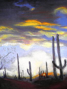 Desert Sunset by Curt Peifley