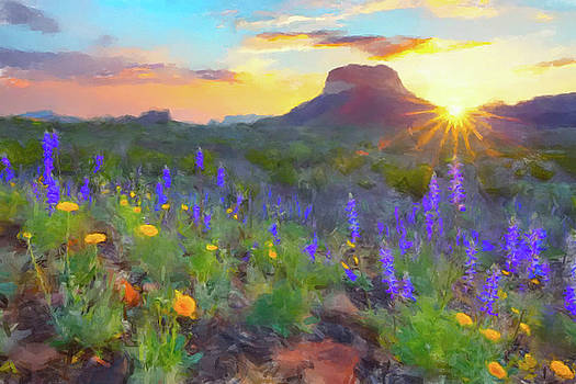 Desert Sunset by Gary Grayson