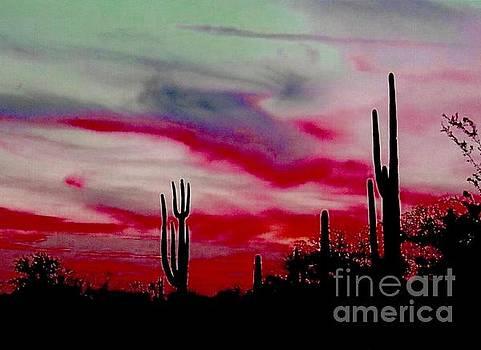 Desert Sunset Northern Lights Version  by Joseph Baril