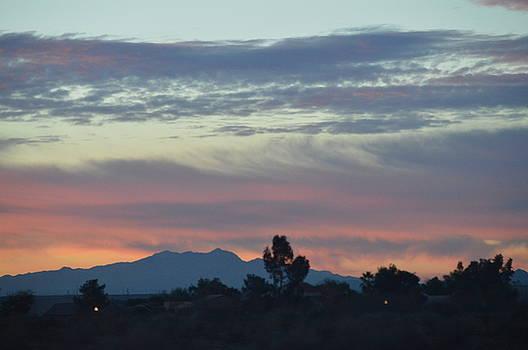 Desert Sunset by Sue Houston