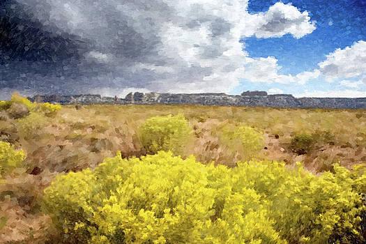 Desert Yellow Flowers by Gary Grayson