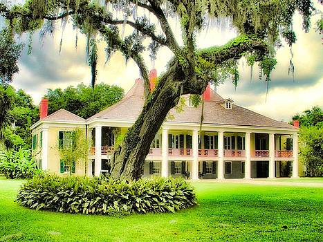 Destrehan Dream by Nelson and Cheryl Strong