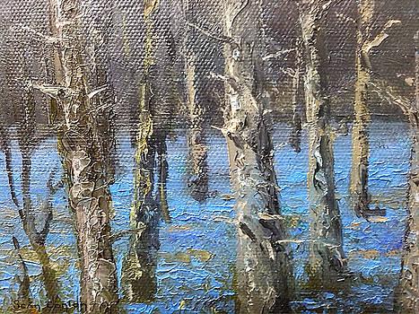 Detail from Bluebell splendour in Garryhinch by Sean Conlon