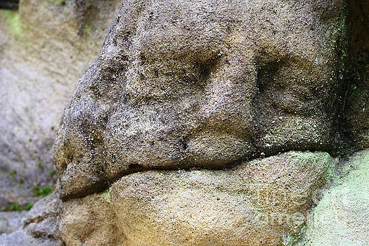 Detail of the stone head by Michal Boubin