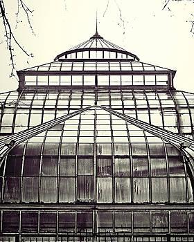 Detroit Belle Isle Conservatory by Alanna Pfeffer