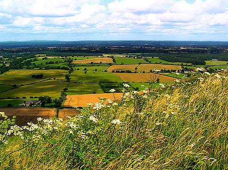 Devil's Dyke in Somerset England by Jen White