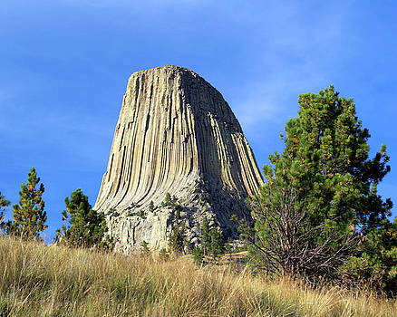 Devils Tower At Sunset by David Hintz