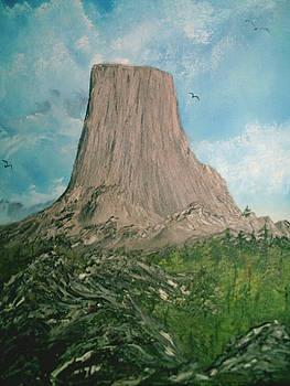 Devils Tower by Jim Saltis