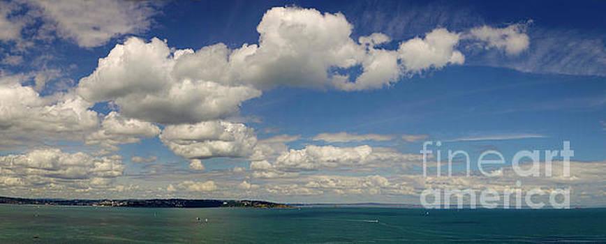 Devon Coastline by Edmund Nagele
