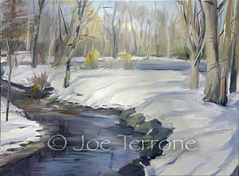 Diamond Brook by Joseph Terrone