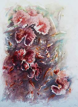 Dianthus  by Rachel Christine Nowicki