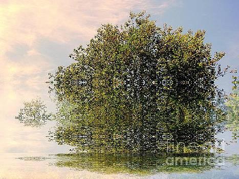 Dimensional by Elfriede Fulda