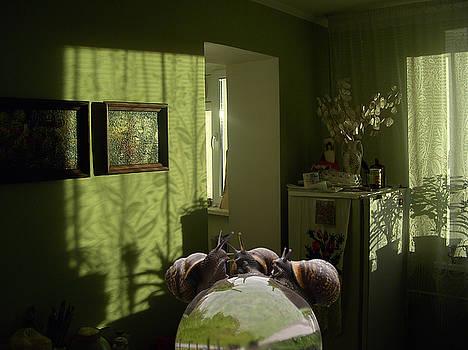 Dining room by Yury Salko
