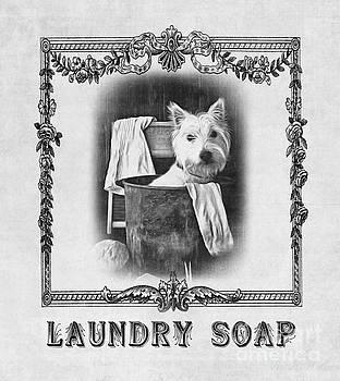Edward Fielding - Dirty Dog Laundry Soap