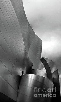 Gregory Dyer - Disney Concert Hall in black and white